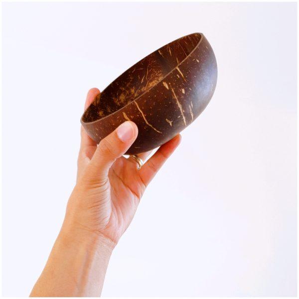 Bol en noix de coco